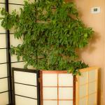 JapaneseScreen-36.jpg